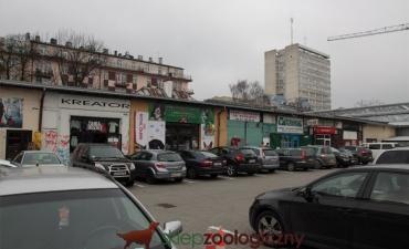 sklep_zoo-81